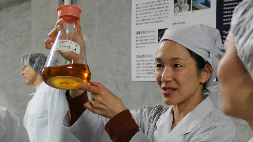 A Fukumitsuya tour guide shows off the yeast used to make sake in kanazawa japan