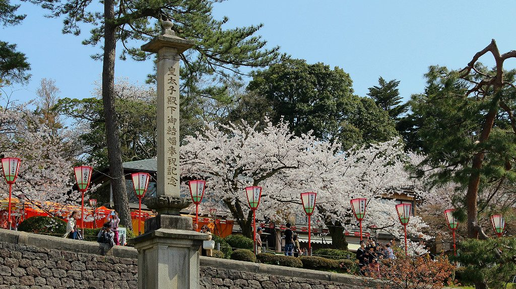 Sakura-lined Edomachi alongside Kenrokuen