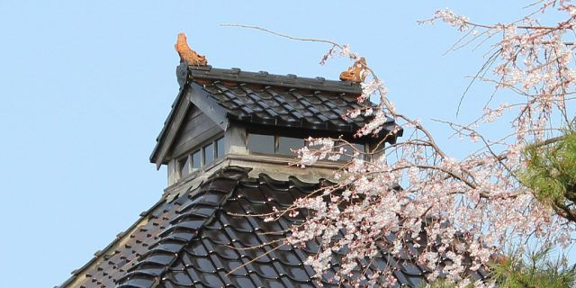 The Lookout Point of Myoryuji, the Ninja Temple, obscured by sakura cherry blossoms on Kanazawa