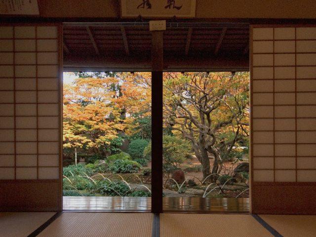 Terashima Garden in Autumn
