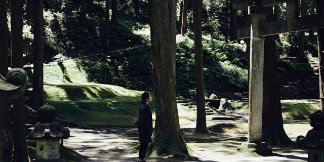 Moss garden in the Forest of Wisdom in Komatsu