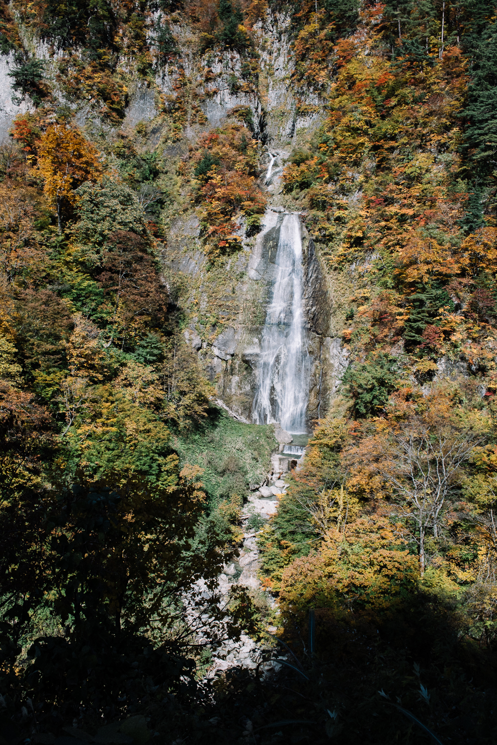 Waterfall amid autumn colors along the White Road, the scenic highway to Shirakawa-go.