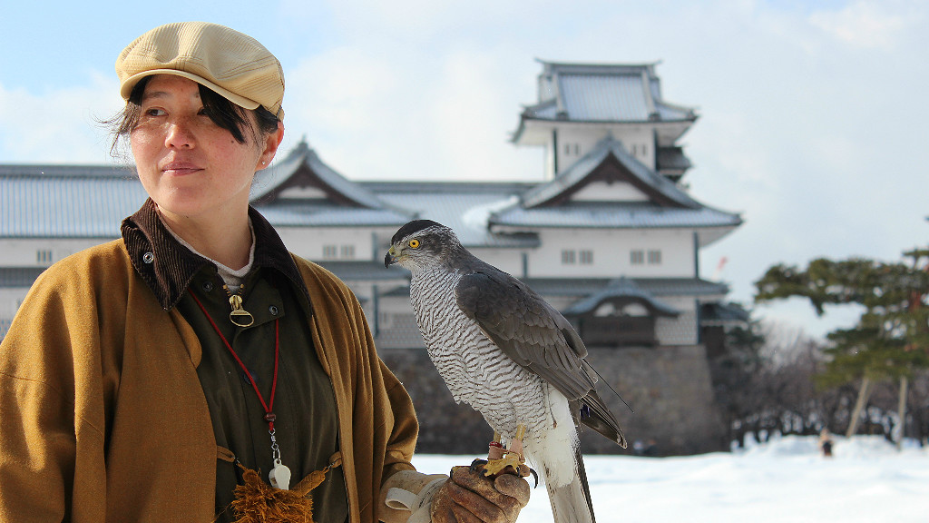 traditional Japanese falconry demonstration at Kanazawa Castle