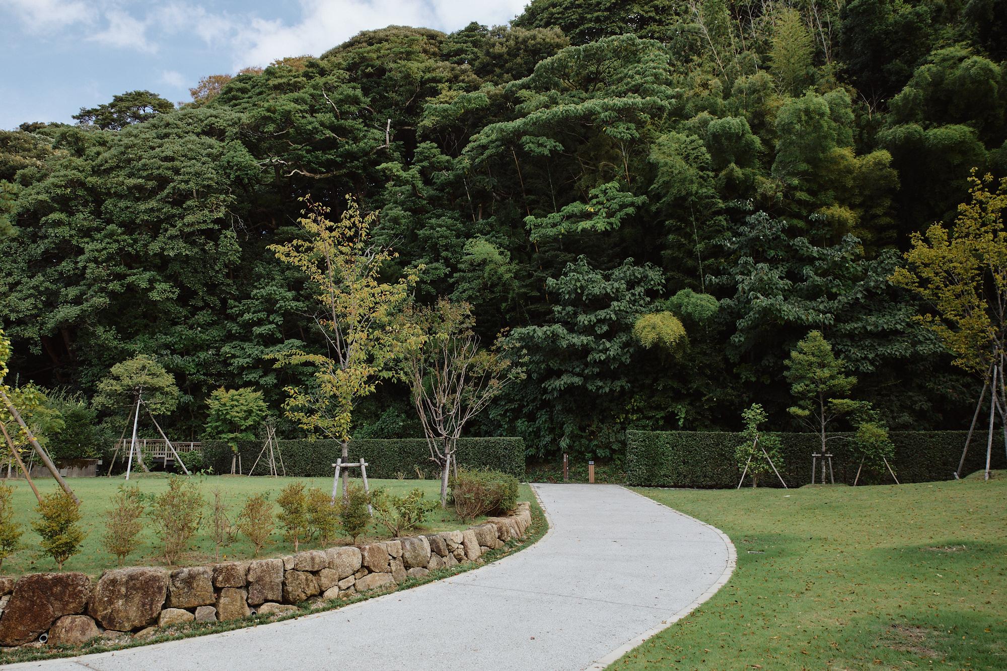 Honda park, forest